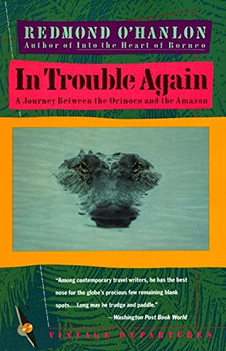 Image of In Trouble Again